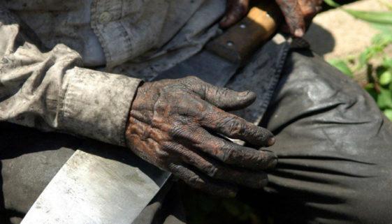 59 pessoas são encontradas em situação análoga à escravidão em MG