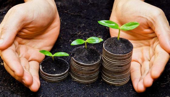 Instituto Legado promove capacitação para startups de impacto social