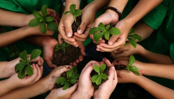 É urgente a educação ambiental – é no meio ambiente que deixamos a marca de quem somos