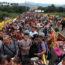 refugiados em roraima