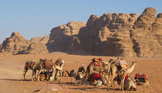 Oriente Médio: A pérola desconhecida