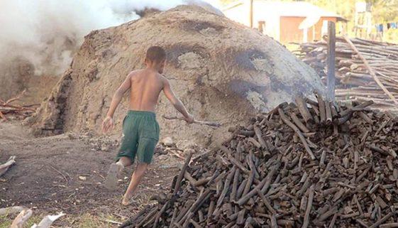 2021: o ultimato internacional para a eliminação do trabalho infantil