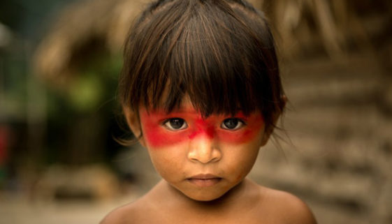 Cerca de 30% das crianças indígenas sofrem com a desnutrição crônica