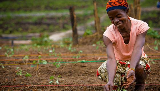 Livro destaca a luta das mulheres que trabalham no campo