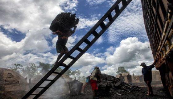 Mil pessoas são vítimas de escravidão moderna por dia no Brasil