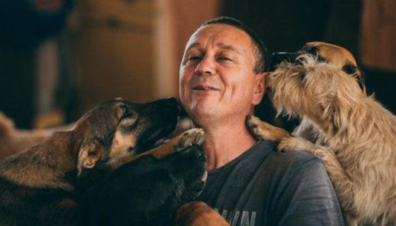Homem resgata e cuida de mais de 750 cães abandonados, na Sérvia