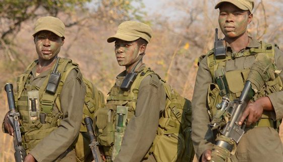 Mulheres formam grupo de combate à caça ilegal no Zimbábue