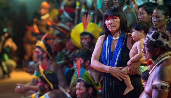 Sofrimento ignorado: desmatamento em terras indígenas aumentou 74%