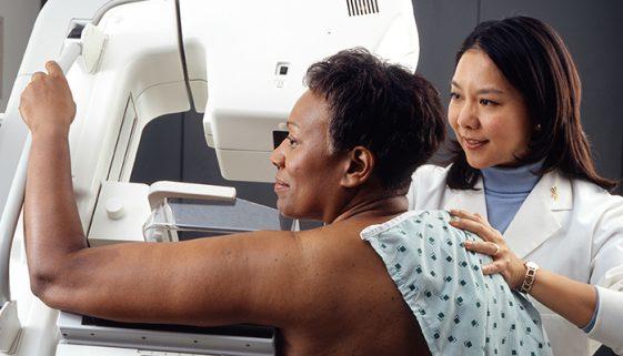 ONG oferece capacitação para cuidar de pacientes com câncer de mama