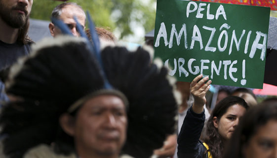 653 ambientalistas brasileiros foram assassinados nos últimos 16 anos