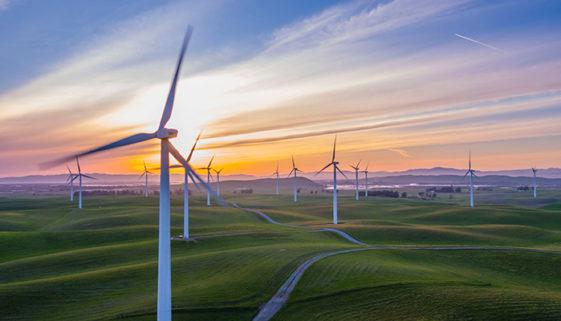 Inscrições abertas para o edital 2020 do Programa Ecomudança