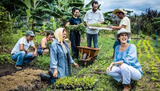 Projeto distribui mil marmitas em comunidades carentes de SP
