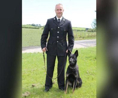 Em seu primeiro turno, cão policial encontra mãe e bebê desaparecidos