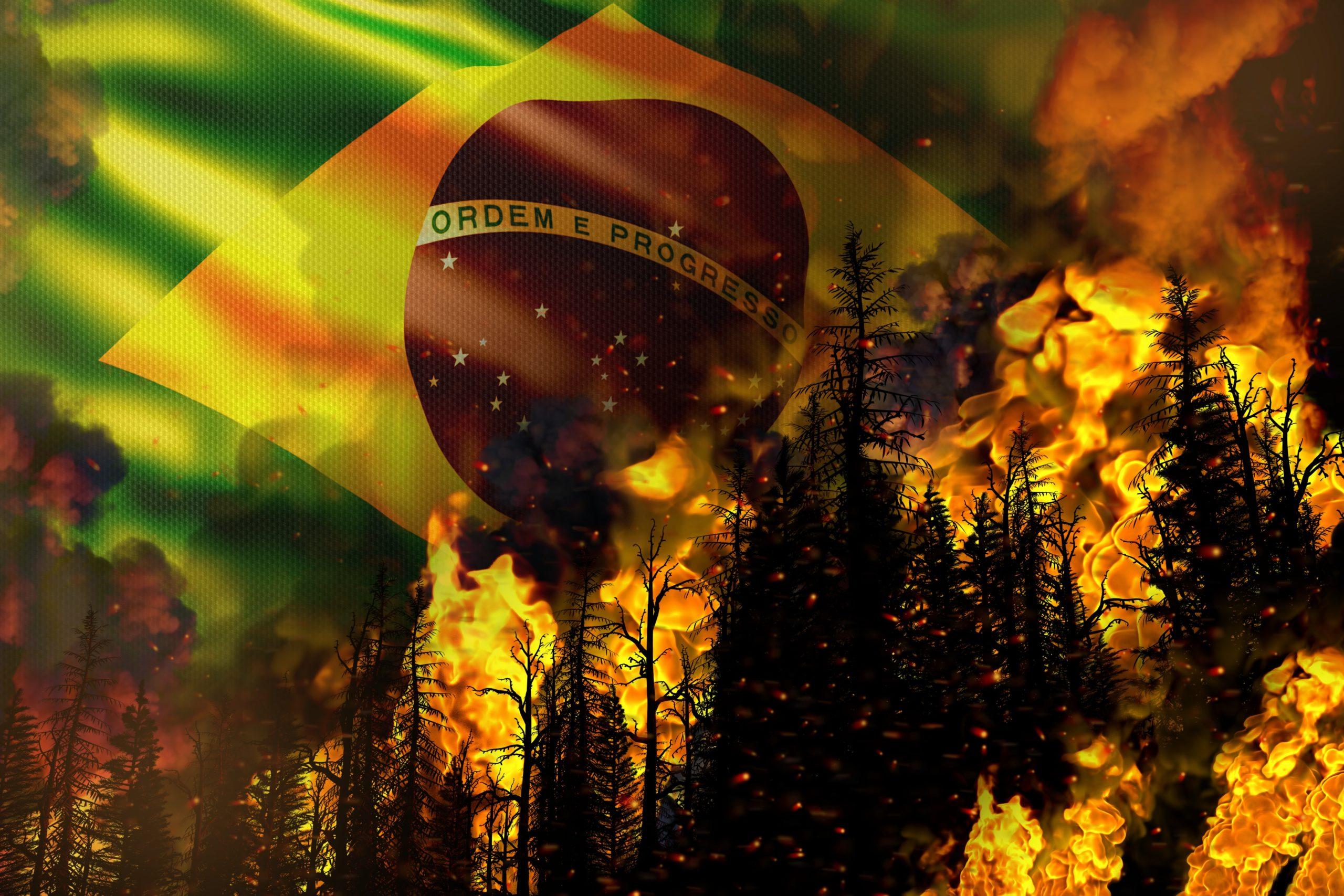8 países assinam carta que cobra ação do Brasil contra queimadas