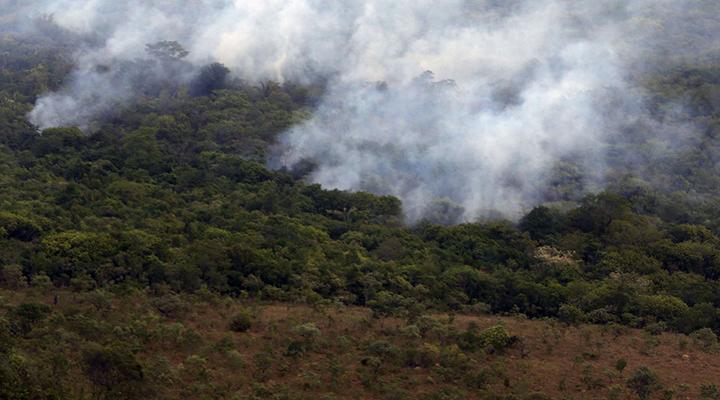 Meio ambiente, queimadas e desmatamento