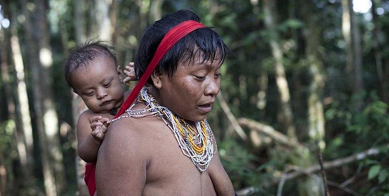 Indígenas no Brasil sofrem com queimadas, ameaças e agressões